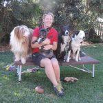 rachel mahoney, the balanced dog