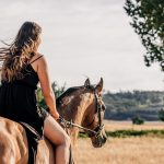 equine osteopathy, horse and rider